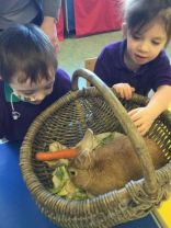 Blackberry Farm visits Nursery