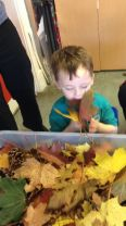 Nursery playing with the leaves they collected on their nature walk